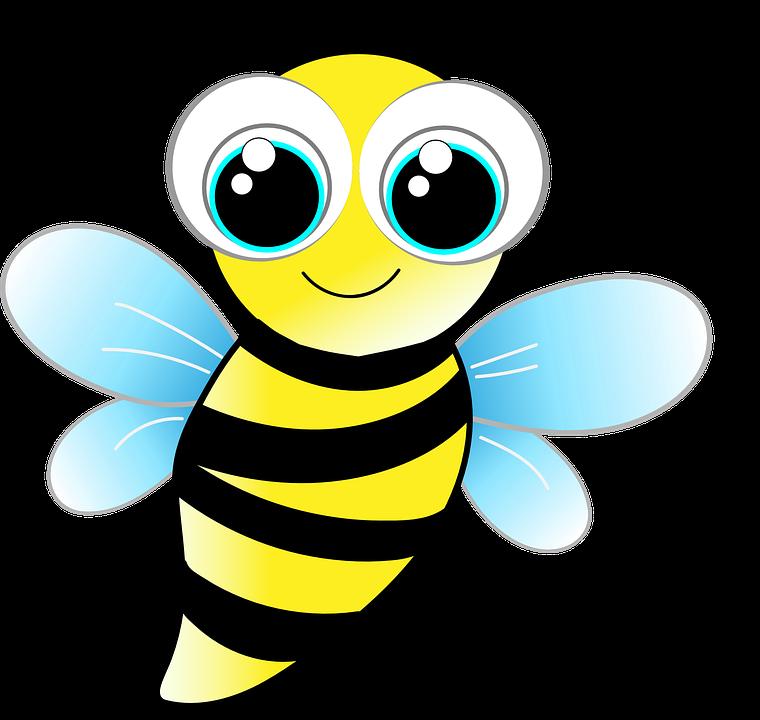 Betsy Bee